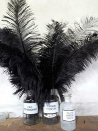 Struisvogelveer Black - Zwart 60 cm