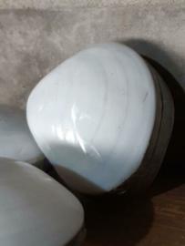 Schelpendoosje Gepolijste Glam Schelp Doosje Parelmoer 8 cm