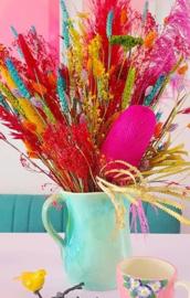 Gemengd Droogboeket Droogbloemen Boeket Multi Color Valentijnsdag