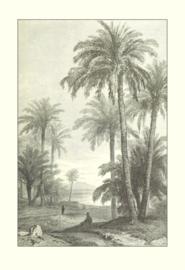 Kaart Ansichtkaart Palmbos - Palm Haeven