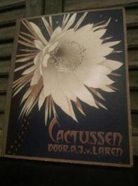 Oud Brocante Plaatjesboek Verkade Cactussen