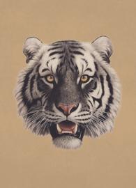Kaart Ansichtkaart Tijger - Tiger