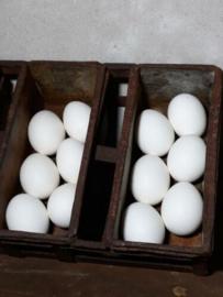 Set van 12 Wite Paaseieren Kippenei Ei Wit