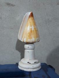 Conus Caramel 9-10 cm Grote Schelp op Sokkel