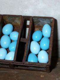 Set van 12 Blauwe Paaseieren Kippenei Ei Blauw