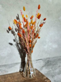 Gemengd Droogboeket Droogbloemen met Vaas Erlenmeyer Oranje Zalm