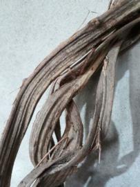 Gebonden Krans  Liaan 40 cm