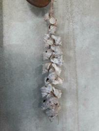 Schelpenhanger - Schelpenslinger  met Naturel Schelpen 25 cm