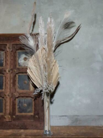 Gemengd Droogboeket Droogbloemen met Vaas Tube Naturel Pauwenveer