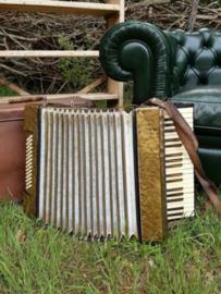 Oude Vintage Muziek Trekharmonica Accordion in Koffer