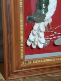 Oude Vintage Lijst Schilderij Schelpenschilderij Vogel Duif