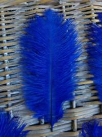 Set Struisvogelveren 10 stuks 15-20 cm - Kobalt Blauw