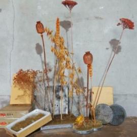 Inspiratie Oude Vintage Ikebana Kenzan Flowerfrogs