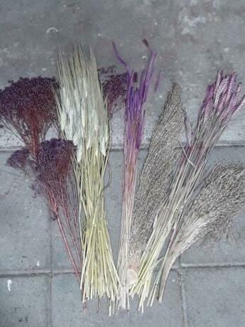 Gemengde Bos Droogbloemen Pakket Mix DIY Paars Naturel