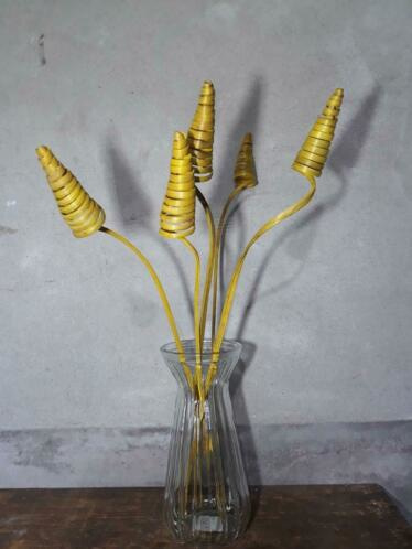 Gedroogde Bos Cane Cone Palm Droogbloemen Spiraal Geel 5st.