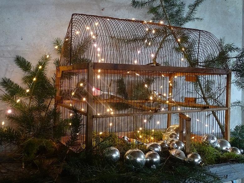 kerstdecoratie kooi.jpg