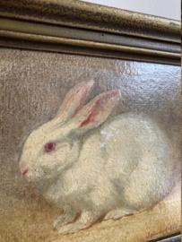 Piep klein portret van een konijn in houten lijst. Olieverf schilderijtje op doek