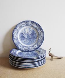 Set van 10 aardewerk borden, Royal Tudor Ware Ironstone. Blauw vintage servies
