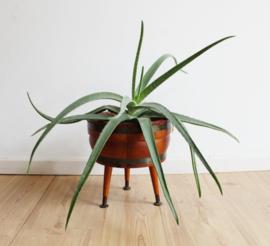 Ronde vintage plantenbak. Houten retro design bloempot / bloembak