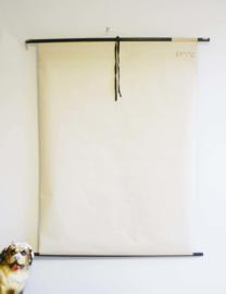 Het lancetvisje: Vintage schoolplaat, Hagemann/Jung-Koch Quentell - dierkunde