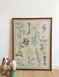 Geborduurde prent met planten en bloemen. Vintage afbeelding van kruiden.