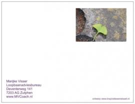 Marijke Visser Loopbaanadviesbureau   Inspiratie kaart voor cliënten