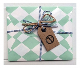 Gift set ENJOY | Mint ruitje | 4 inspiratiekaarten & 3 stickers