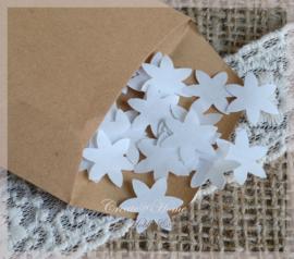 Gegomde kraftpapier ster/bloem bruin/wit in een pergamijn/kraft zakje
