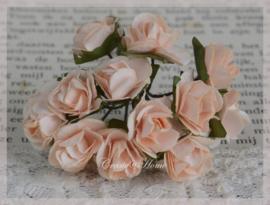 Papieren roosjes licht perzik. Per 10