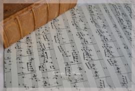 Muzieknoten karton dubbelzijdig. Per stuk