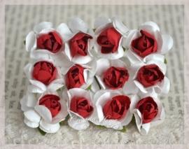 Papieren roosjes rood-wit. Per 10