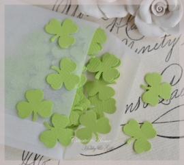 pergamijn loonzakje gevuld met 100 klavertjes in vele kleurtjes