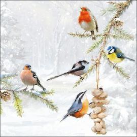 Servetten vogeltjes. Per 10