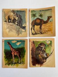 Dierenboekjes, diverse titels