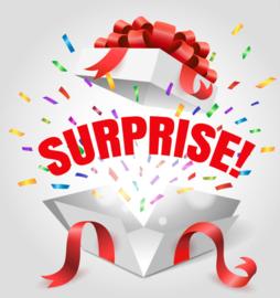 Surprise Tas jongens