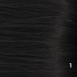 Tape Extensions (Steil) kleur #1