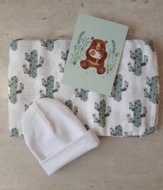 brievenbus liefs - Happy Cactus