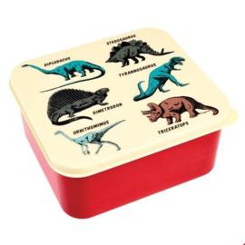 Rex - Prehistoric land- Dino - Lunchbox