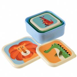 Rex - Set van 3 snackdoosjes - Colourful Creatures