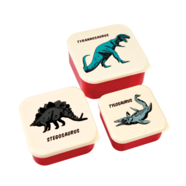 Rex - Prehistoric land- Dino - Snackbox set van 3