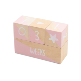 Jollein - Milestone Blocks - wit/roze