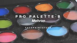 MEHRON, paradise ProPalette - B