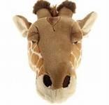 Dierenkop giraf