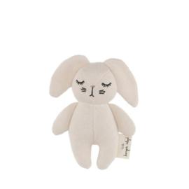 Rammelaar mini konijn