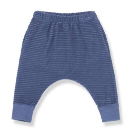 Sassari pants azzurro