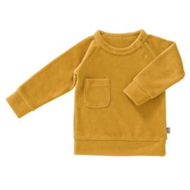 Sweater velours - fresk