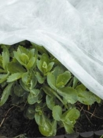Winter vliesdoek 1000x100 cm, dikte 17 g/m2
