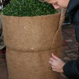 Isolatiemat planten  L150 x H50 cm