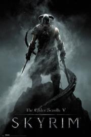 Skyrim Poster Dragonborn (61x91cm) - Pyramid International [Nieuw]