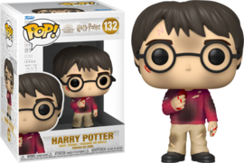 Harry Potter 20th Anniversary Funko Pop Harry With Stone #132 [Pre-Order]